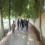 پسران ممتاز مهرآفرین در باغ ویلای کردان