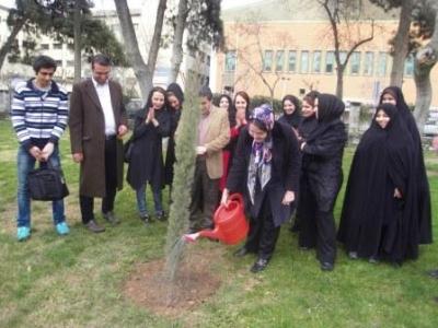 مهرآفرینیها نهال مهرآفرین را در پارکشهر کاشتند